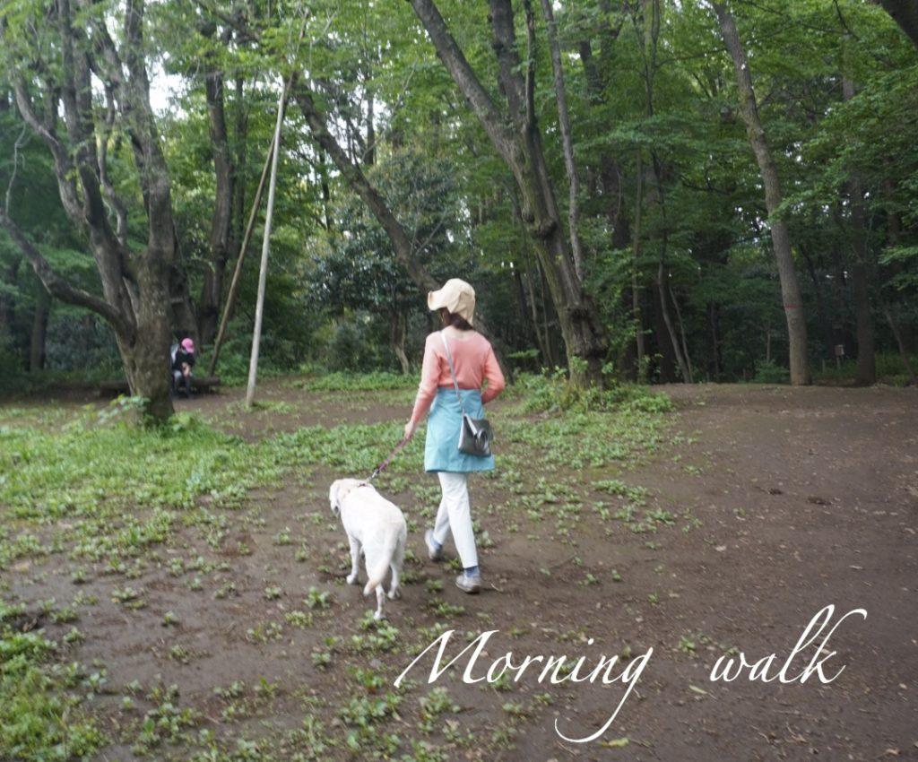 愛犬と朝散歩